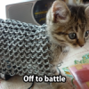 Battle Cat