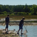 Boys Net Fishing