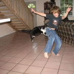 Dancing Boy Attacked By Cat