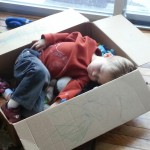 Boy Sleeping In Box
