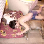Boy Sleeping With Dogs