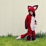 halloween-fox