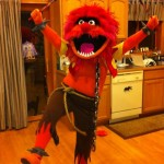 Muppet Costume - Animal