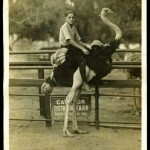 Boy Riding Ostrich