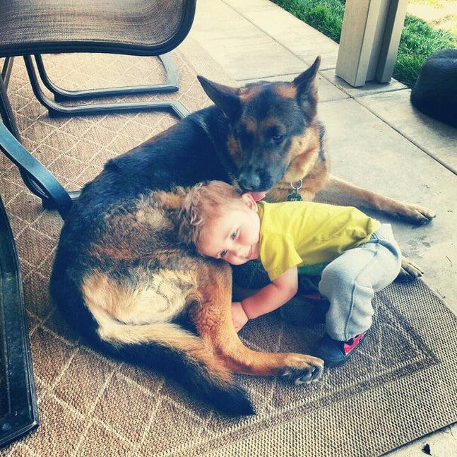 Boy German With Shepherd