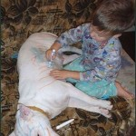 Boy Drawing On Dog With Magic Marker