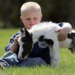 Young Boy With Baby Pony
