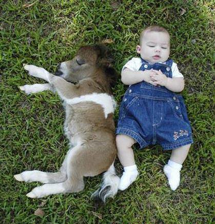 Boy And Pony Sleeping in Field