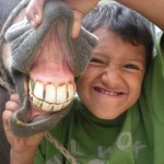 Boy Showing Horse's Teeth