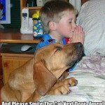 Boy And Dog Praying Bedside