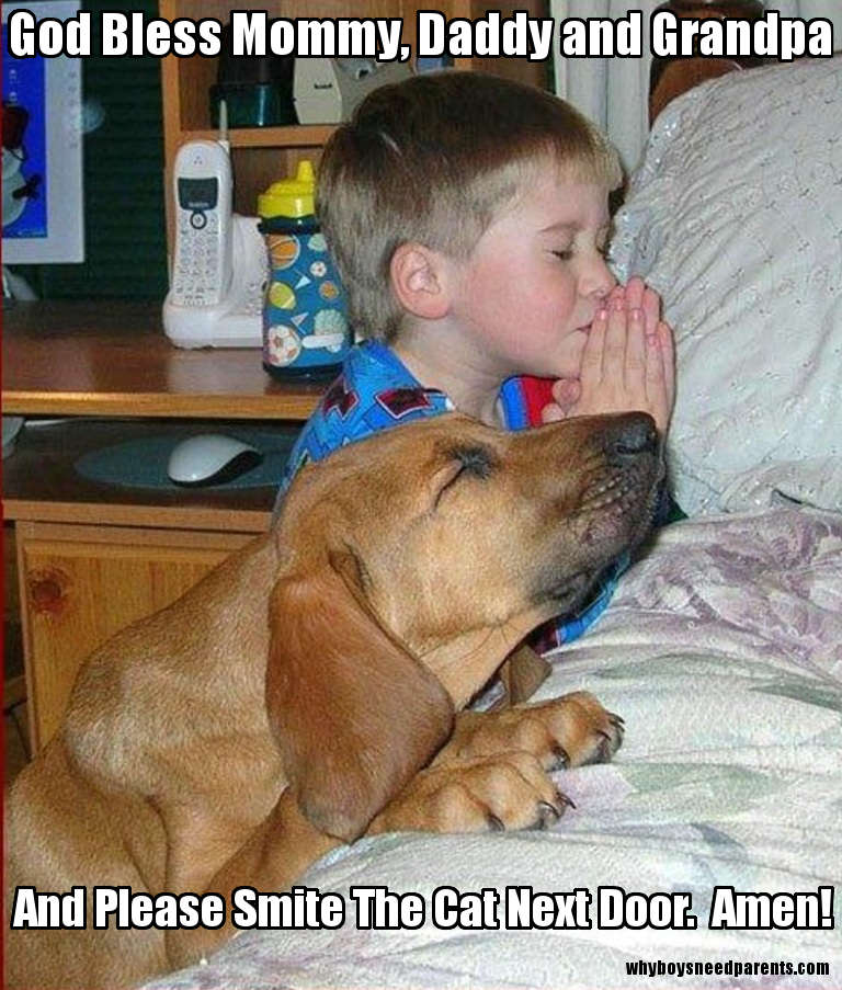 Boy And Dog Praying Bedside