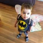 Batman Fairy Princess Halloween Costume