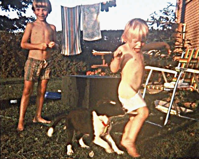Boy Pantsed By Puppy