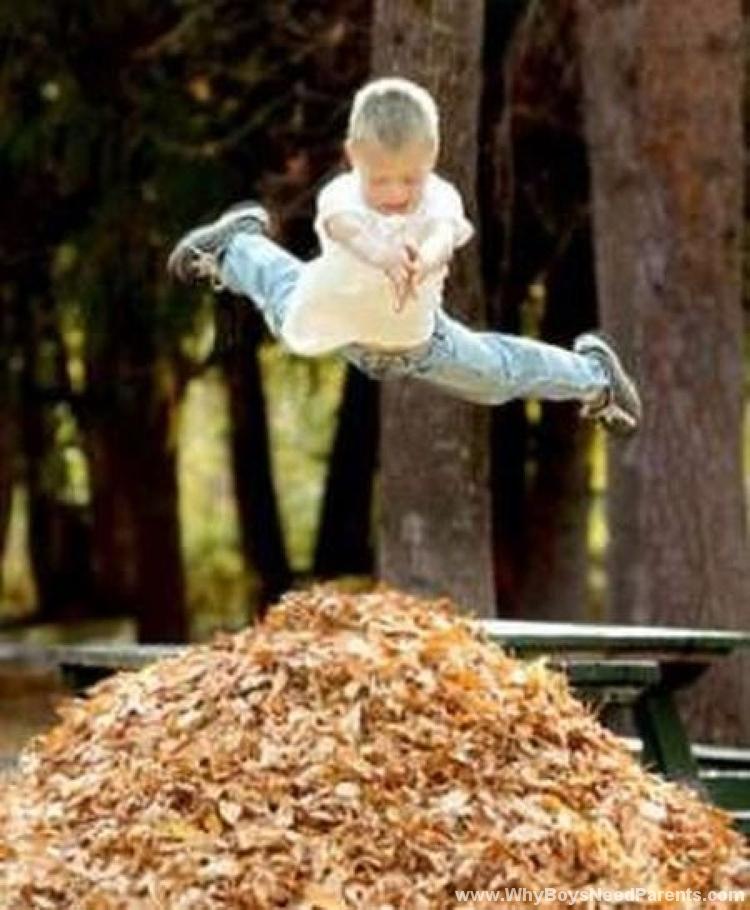 Boys Dives Into Leaf Pile