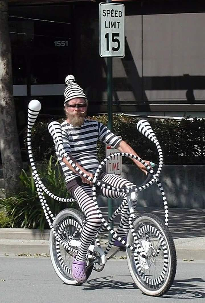 Dr. Seuss's Bike