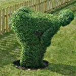 Mooning Topiary
